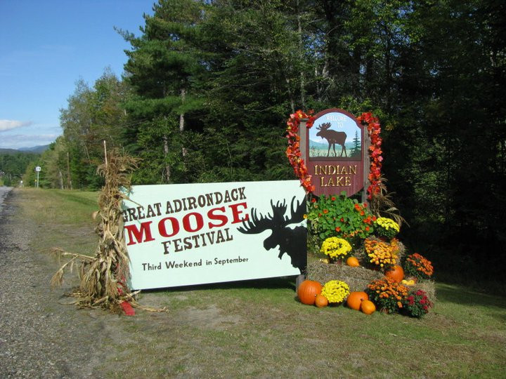Great Adirondack Moose Festival