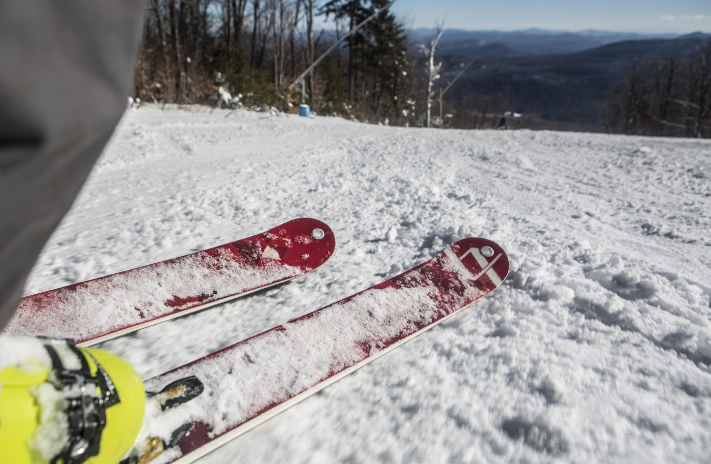 Tips of downhill skis