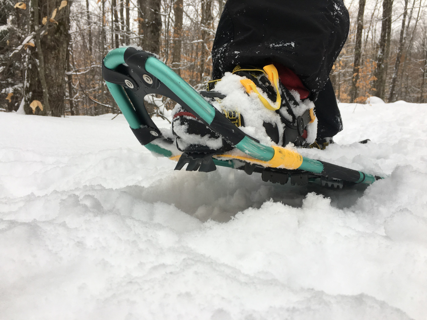 Snowshoes should have good cramp-ons in case of ice
