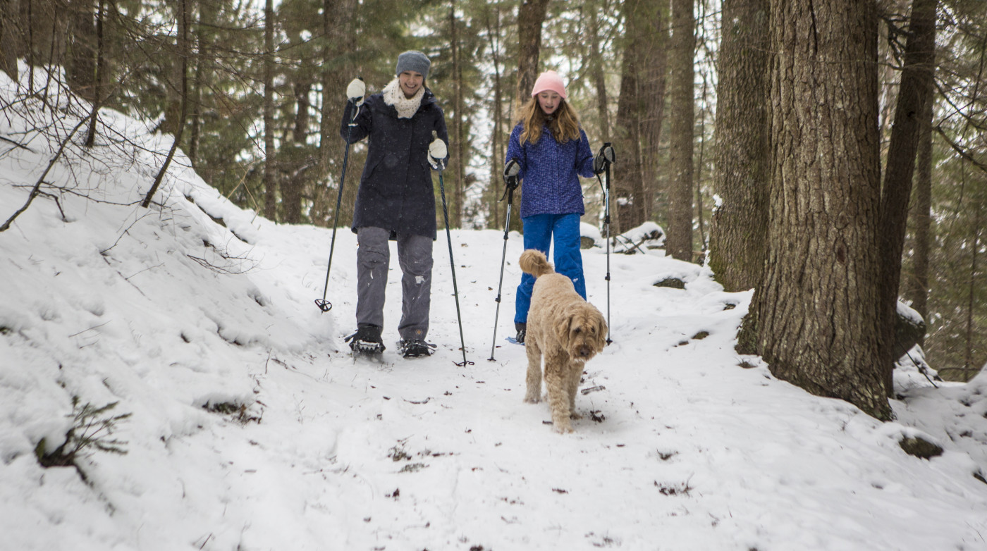 Women snowshoe on a trail with their dog